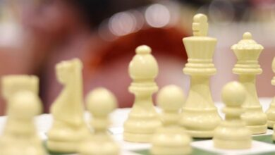 Photo of زکیزاده نایب رئیس بانوان شطرنج شد